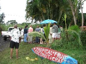 hawaii20071511.jpg