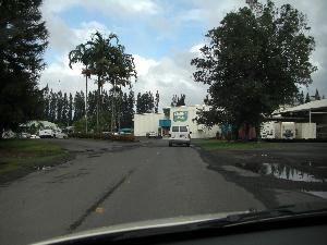 hawaii20071603.jpg